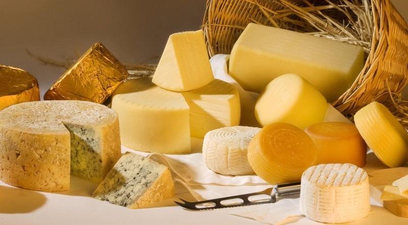разновидности сыра фото